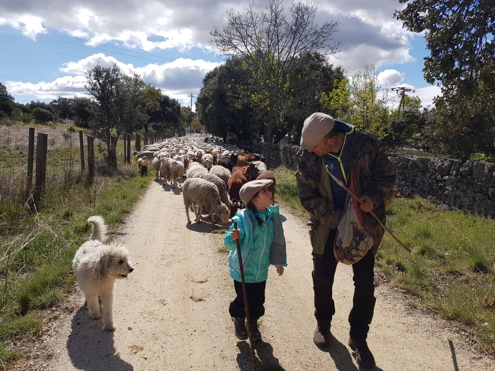 Transhumance in Spain: a new agreement