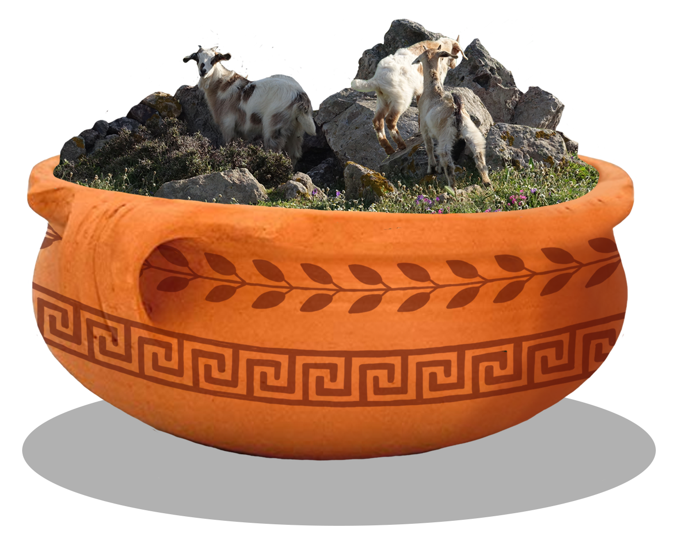 Lemnos Ecosystem in a Dish   Mandra System of Lemnos, Greece