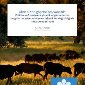 Akdeniz'de Göçebe Hayvancılık