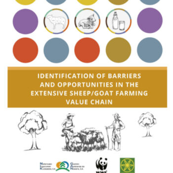 Identification of Barriers and Opportunities in the Extensive Sheep / Goat Value Chain