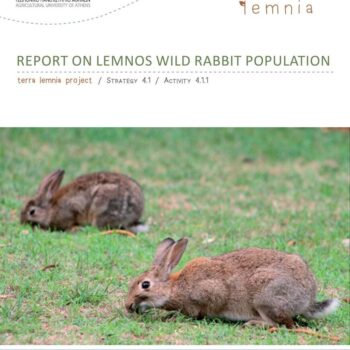 Report on Lemnos Wild Rabbit Population