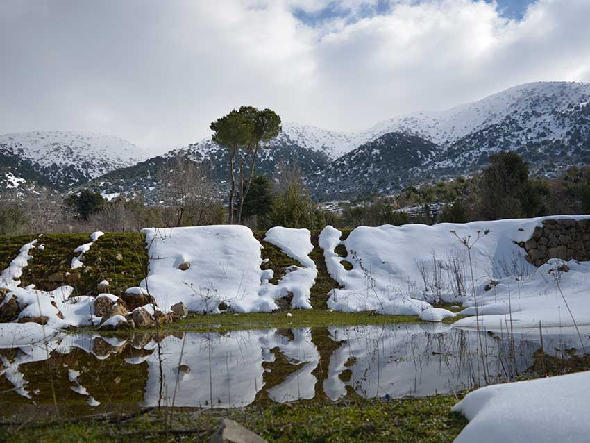 Shouf mountain with snow, by Shouf Biosphere Reserve Cultural Landscape project