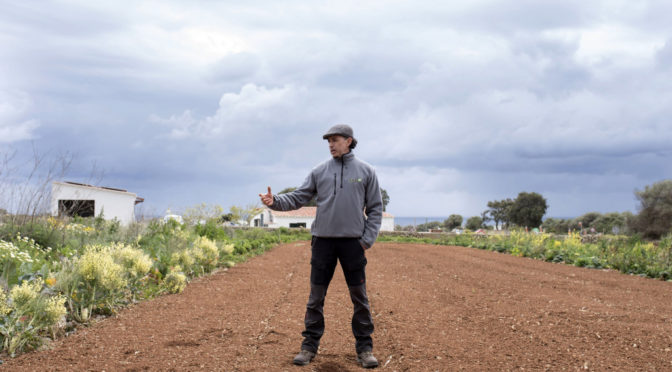Control of pests by looking after the soil