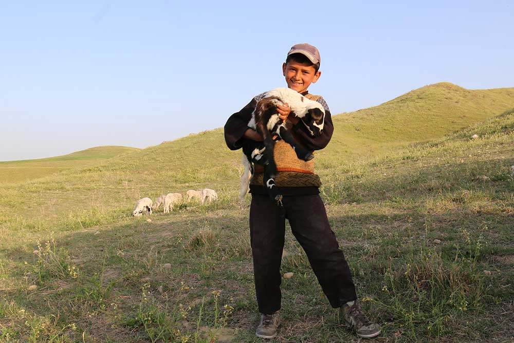 All Smiles, by AMNC partner Yolda Initiative   Mobile Pastoralism in Turkey