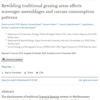Rewilding traditional grazing areas affects scavenger assemblages and carcass consumption patterns