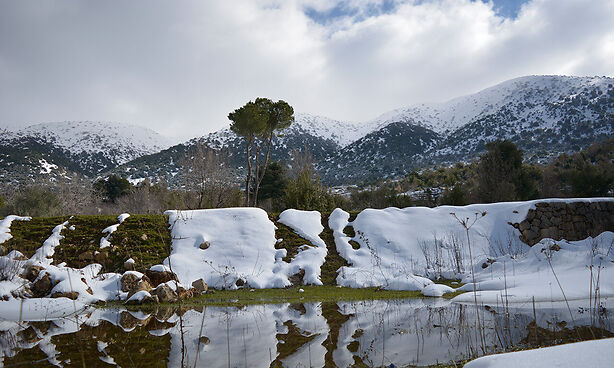 Building the ecologic and socio‐economic resilience of the Shouf Mountain landscape |  Alliance for Mediterranean Nature & Culture (AMNC)